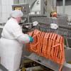 Каждое второе пищевое предприятия Южного Урала нарушает санитарные нормы